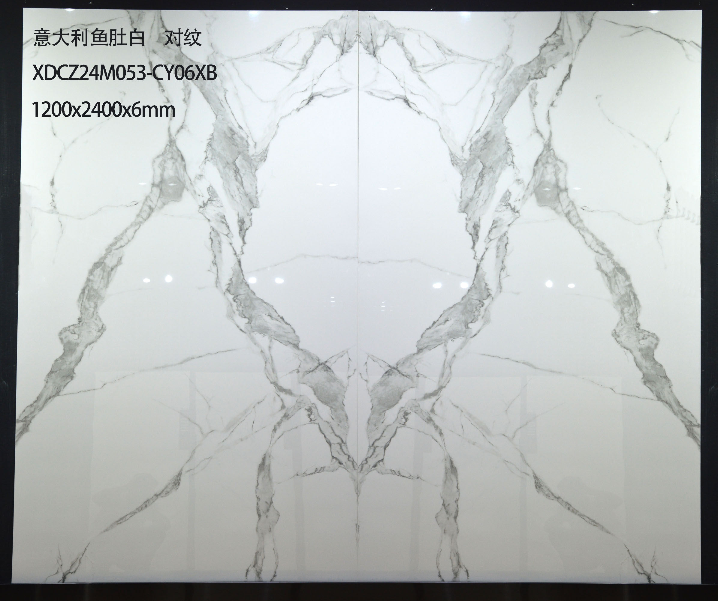 XDCZ24M053-CY06XB 意大利鱼肚白